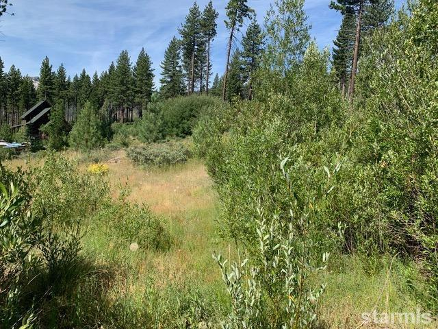 New 0.36 Acres Listing in South Lake Tahoe!